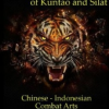 Fighting Patterns of Kuntao and Silat